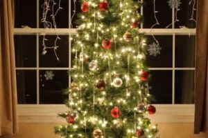 How to photograph your Christmas tree…with or without your family!