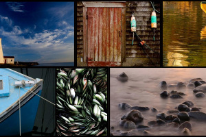 Grand Manan Photography Workshop July 8th-11th 2021